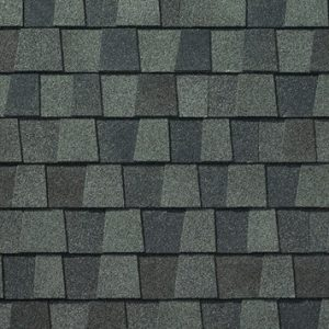 Nantucket Morning Shingles Gainesville Roofing Company