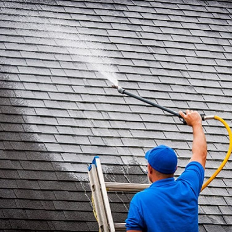 Roof Cleaning Gainesville FL