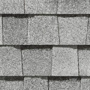 Silver Birch Shingles Gainesville Roofer